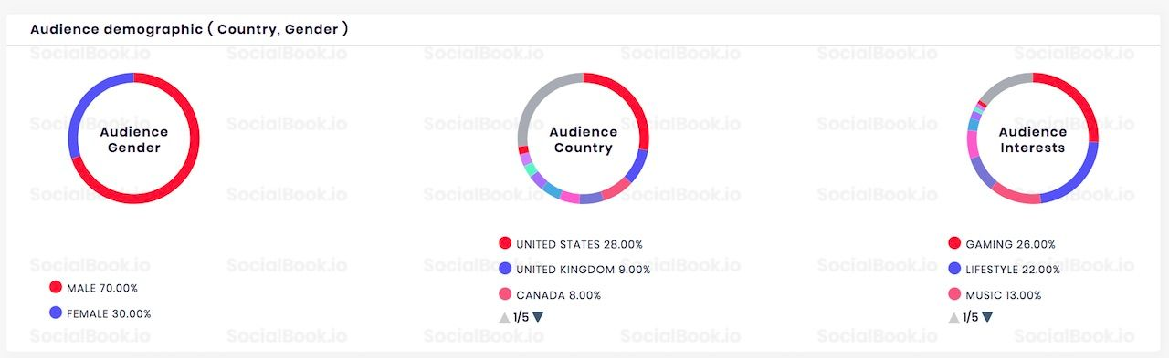 Audience demographics data of PewDiePie's YouTube channel.
