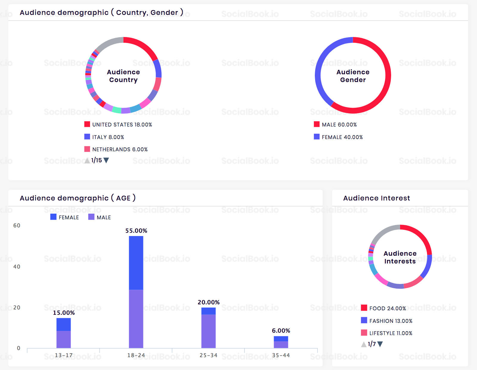 A sample Instagram channel audience demographics data provided by SocialBook.