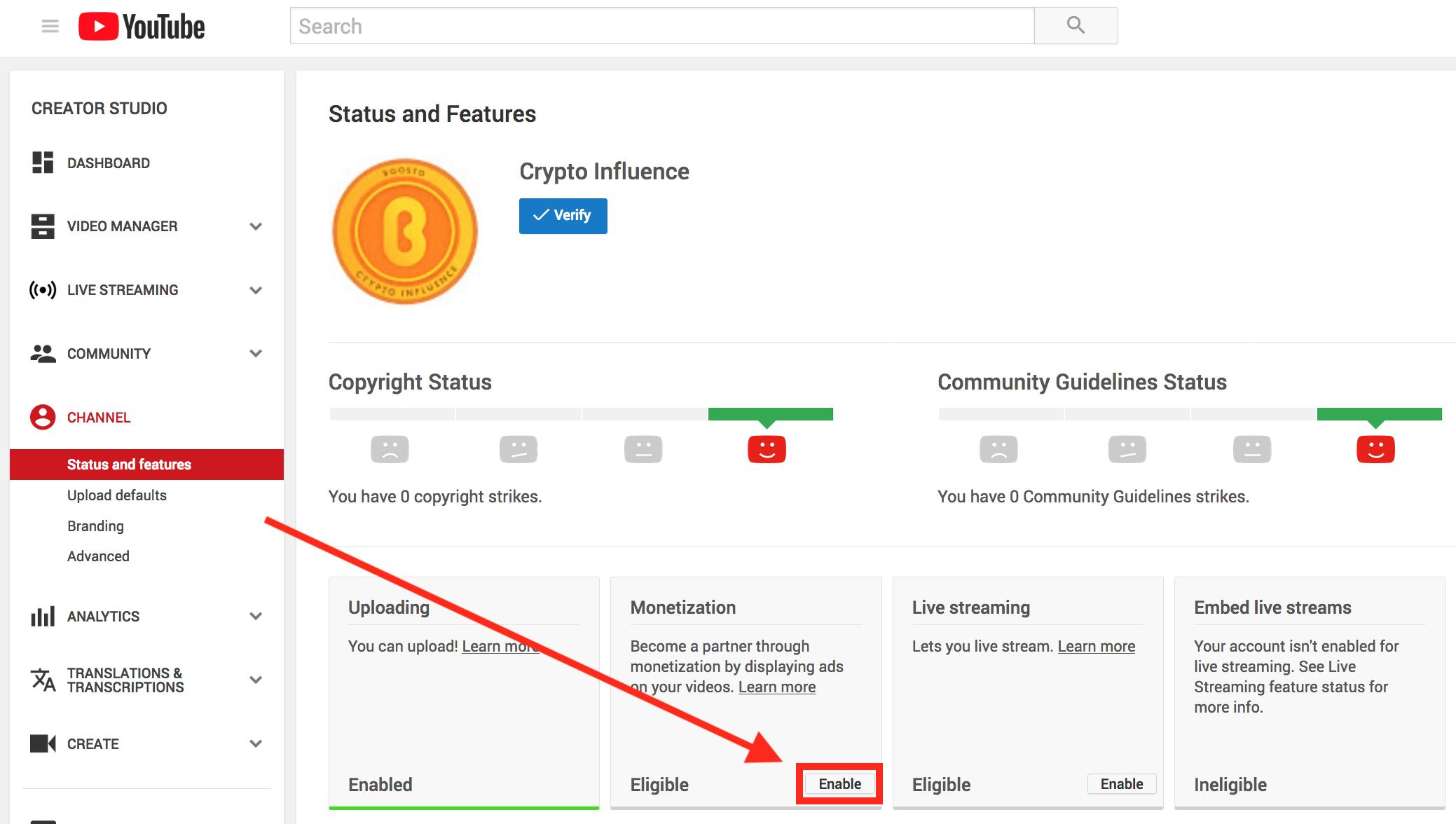 "Enable YouTube Channel ""Monetization"""