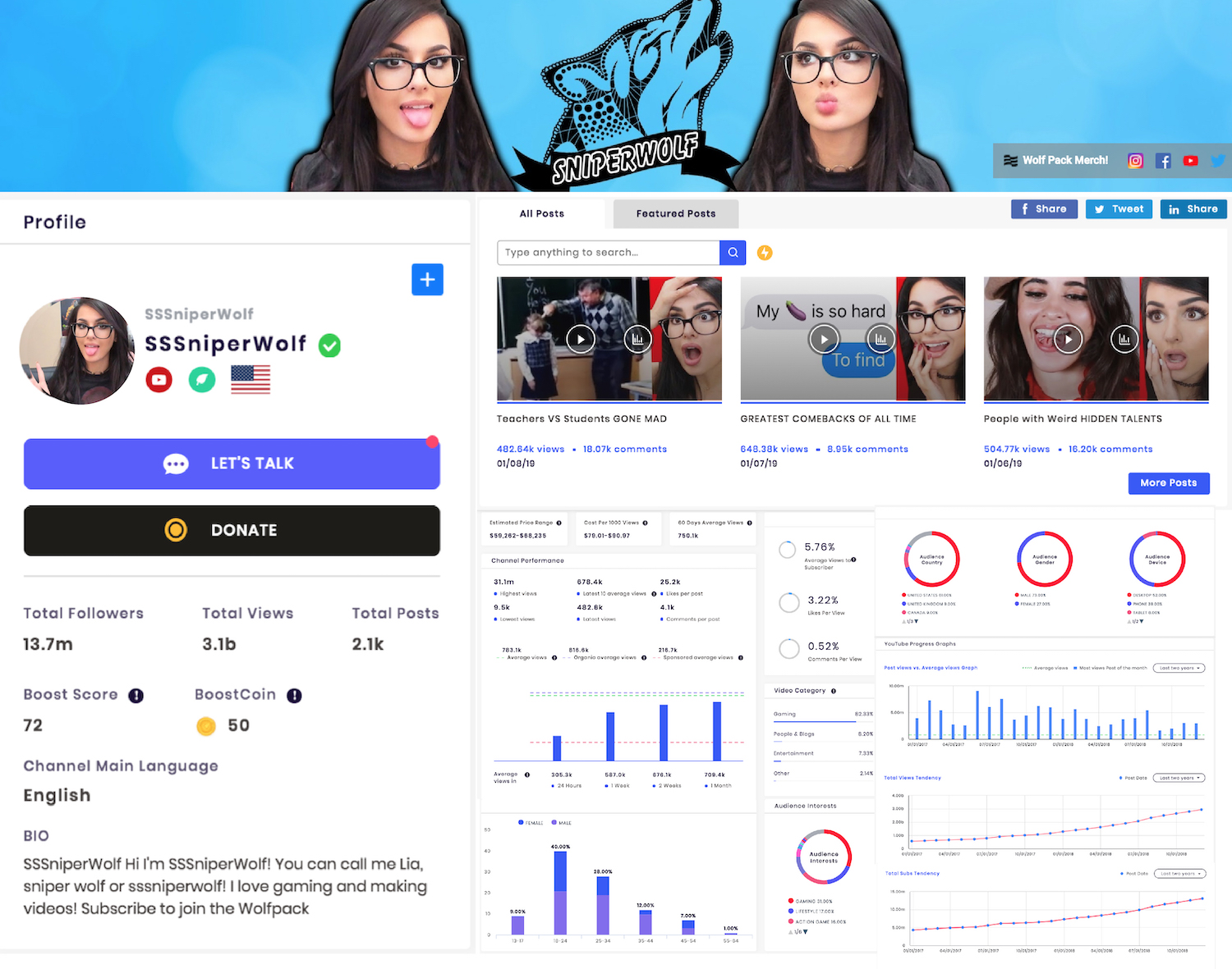 Sample Social Media Influencer Channel Profile and Stats [YouTube]