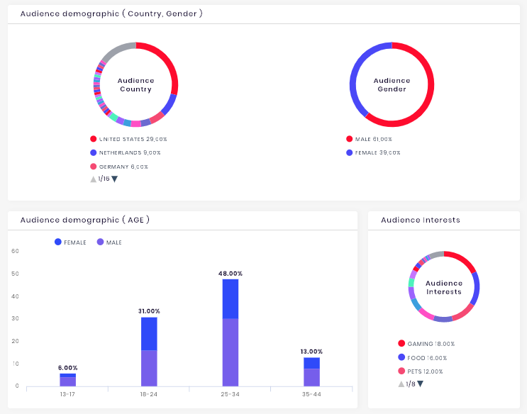 Audience demographics section of the Instagram channel analytics.