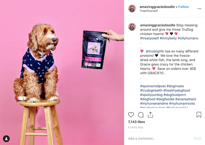 Giving coupon code is one of the marketing strategies when influencers post #sponsored posts. Image Credit: @amazinggraciedoodle