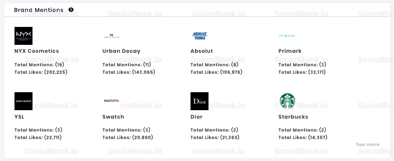 Review the sponsored brands and content of each influencer with SocialBook influencer profile.
