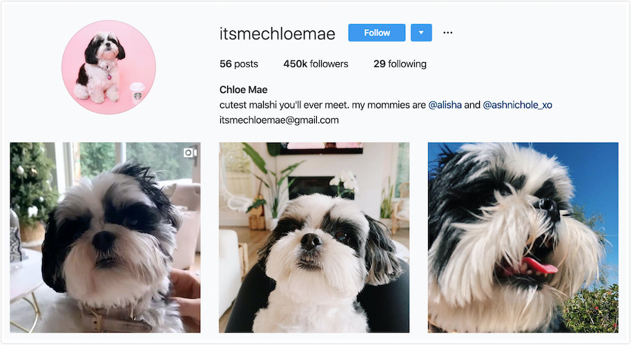 Instagram Profile of Chloe Mae
