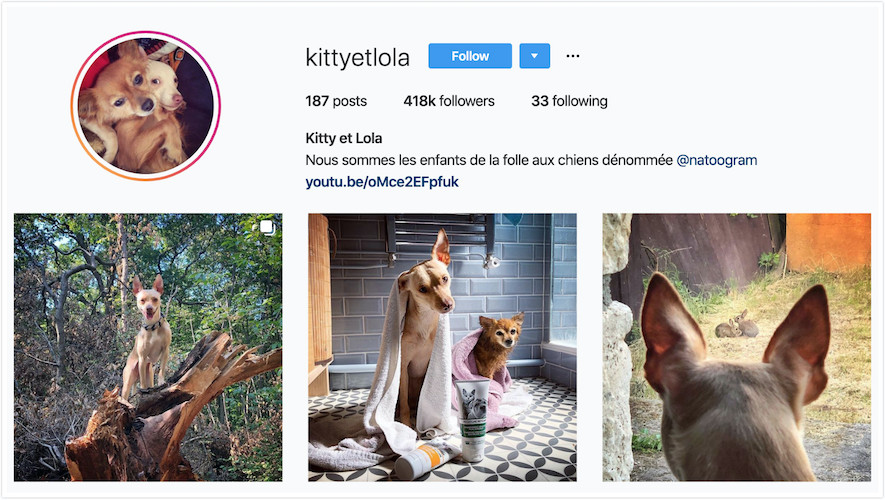 Instagram Profile of Kitty et Lola