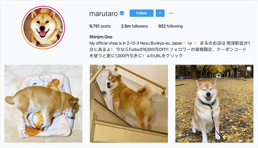 Instagram Profile of Maru