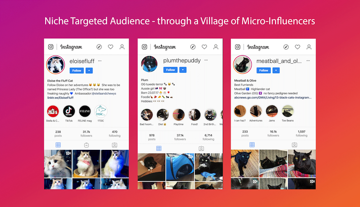 Micro-Influencers-Niche-Targeted-Audience